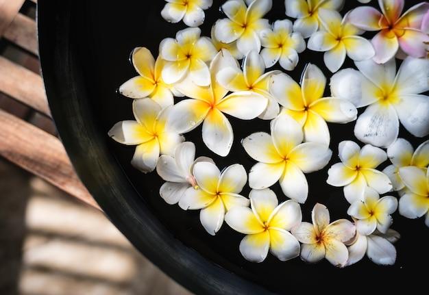 Flores de frangipani en un salón de spa