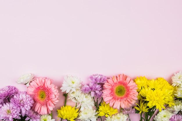Flores frescas aromáticas brillantes.