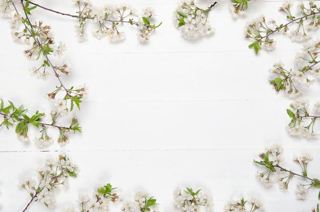 Flores frescas de cerezo en tablones de madera pintados de blanco. copia espacio