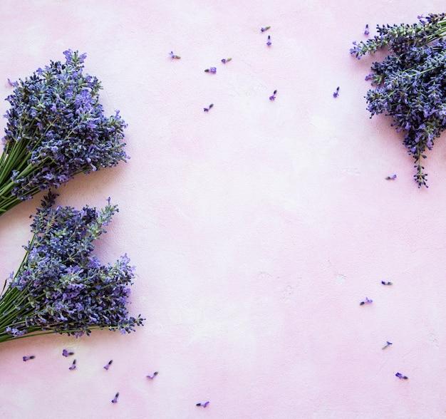 Flores frescas de lavanda