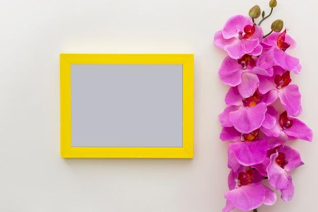 Flores frescas rosadas de la orquídea con el marco en blanco vacío de la foto en la superficie blanca