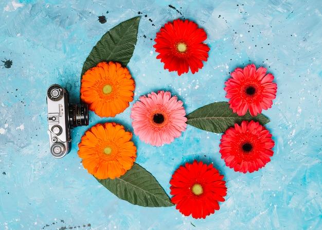 Flores de gerbera brillante con cámara en mesa