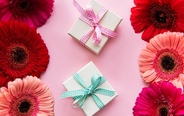 Flores de gerbera y cajas de regalo sobre un fondo rosa. vista superior