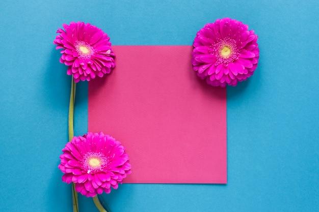 Flores de gerbera y trozo de papel rosa vacío