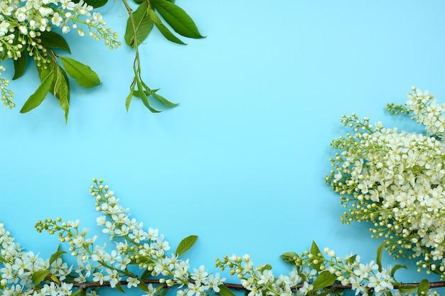 Flores y hojas de cereza de pájaro sobre un azul