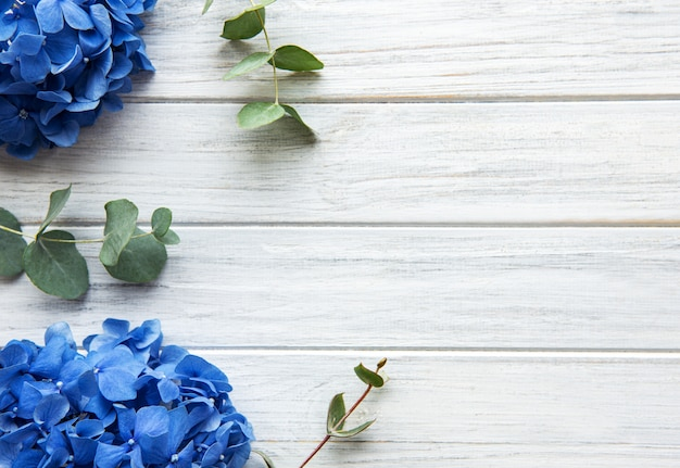 Flores de hortensia azul