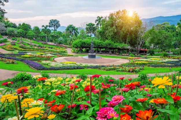 Flores de jardín, jardín de mae fah luang ubicado en doi tung en chiang rai, tailandia.