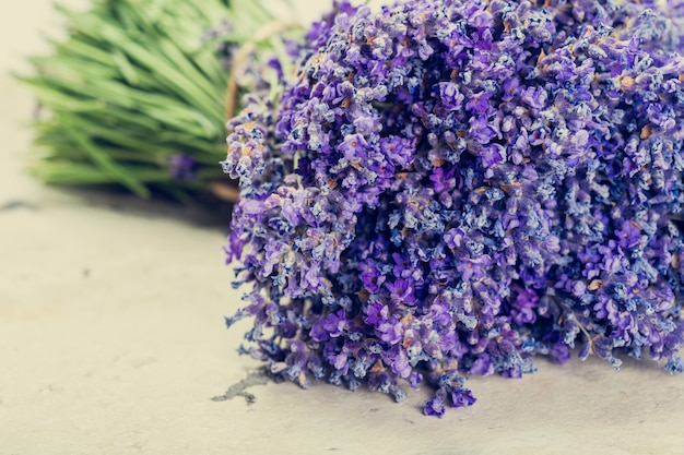 Flores de lavanda de cerca