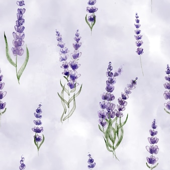 Flores de lavanda de flores silvestres en la ternura delicado fondo patrón botánico sin fisuras