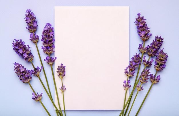 Flores de lavanda y papel en blanco sobre fondo pastel