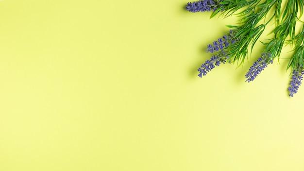 Flores de lavanda en papel tapiz verde con espacio de copia