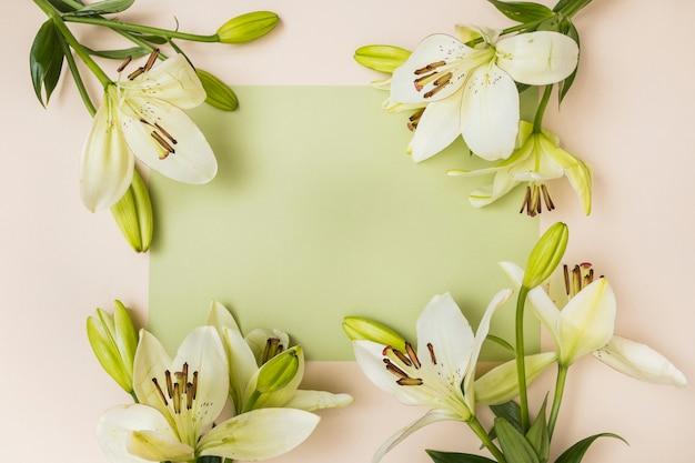 Flores de lirio suave y papel claro