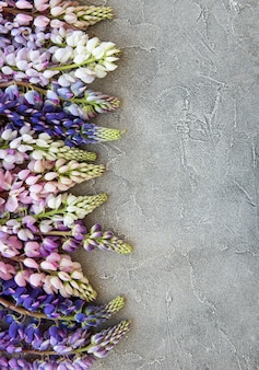 Flores de lupino rosa y morado