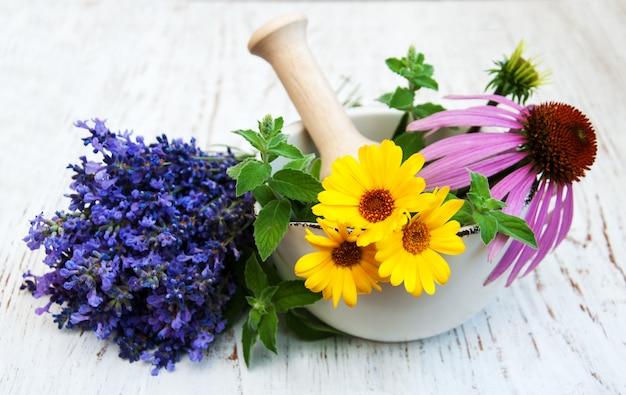 Flores medicinales en mortero.