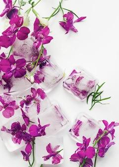 Flores moradas en cubos de hielo.