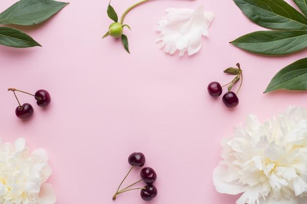 Flores de peonía blanca y bayas de cerezo en superficie rosa pastel
