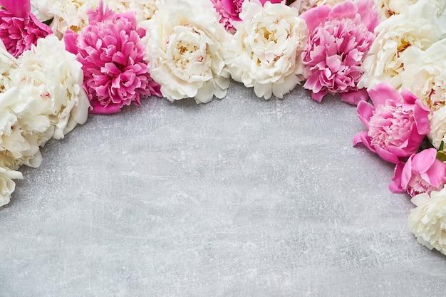 Flores de peonía de colores en gris.