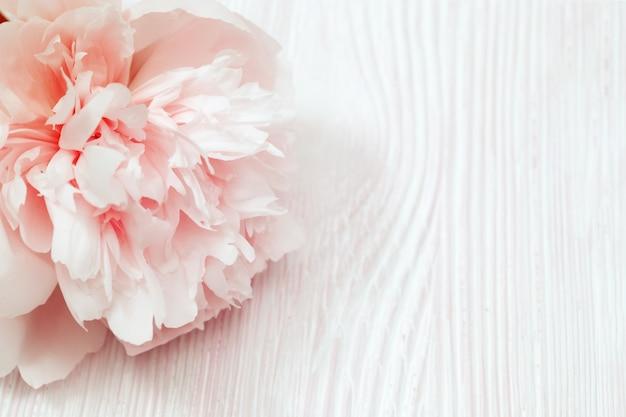 Flores de peonía en flor de cerca en madera clara