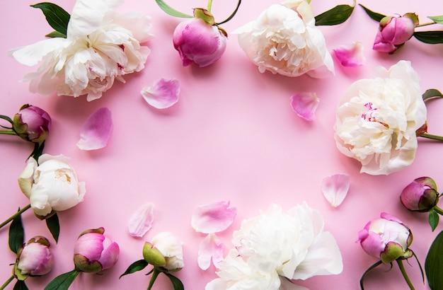 Flores de peonía rosa claro fresco borde con espacio de copia sobre fondo rosa pastel, endecha plana.