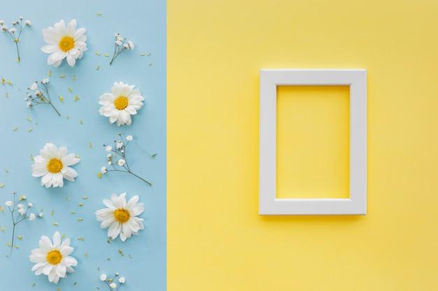 Flores; pétalo y polen con marco de fotos en blanco blanco sobre doble fondo