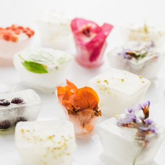 Flores y plantas en cubitos de hielo.