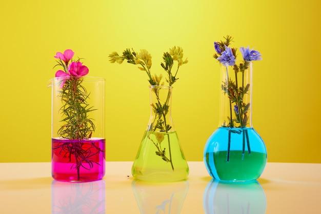 Flores y plantas en tubos de ensayo sobre fondo amarillo. el concepto de investigación biológica.