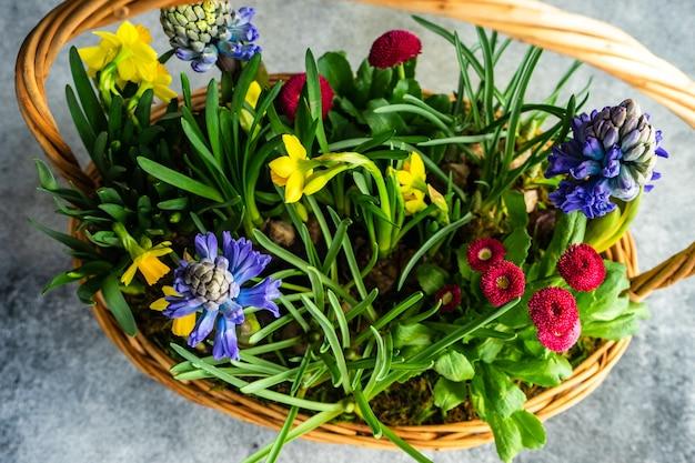 Flores de primavera de puño en composición floral para decoración de interiores