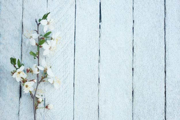 Flores de primavera sobre fondo de mesa de madera. flor del ciruelo