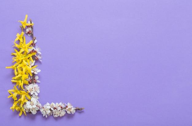 Flores de primavera sobre papel violeta