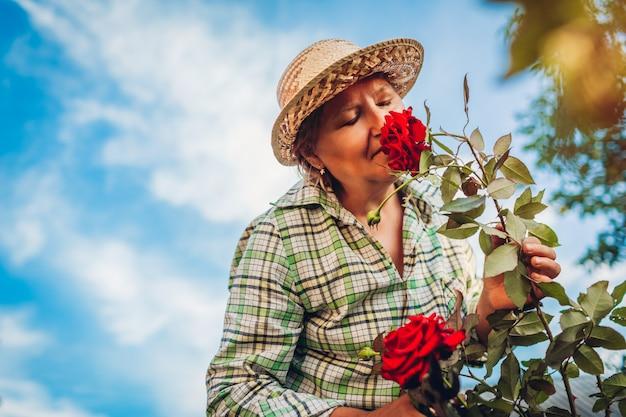Flores que huelen de la mujer mayor en jardín. anciana jubilada disfrutando