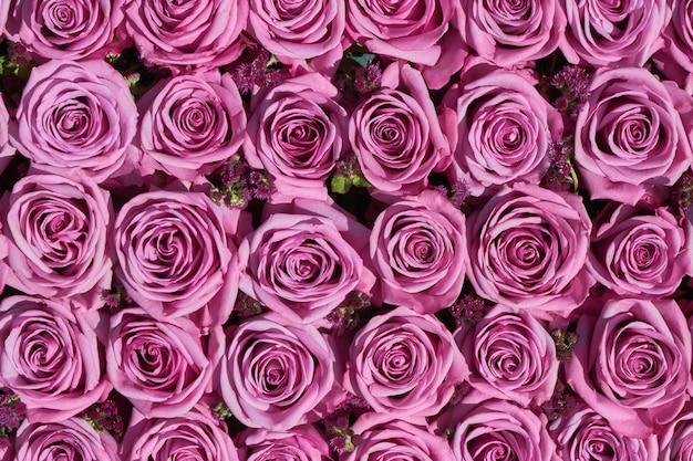 Flores ramo de rosas rosadas, vista superior.