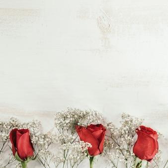 Flores rojas y blancas con espacio de copia en la parte superior