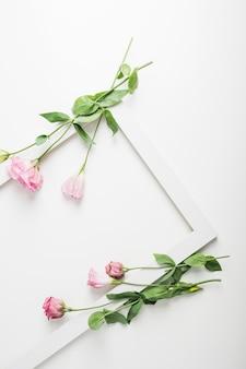Flores rosadas en el marco blanco sobre el contexto blanco