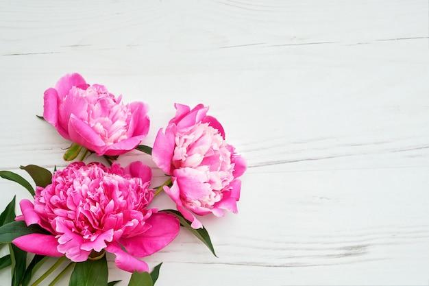 Flores rosadas hermosas de las peonías en el fondo de madera blanco.