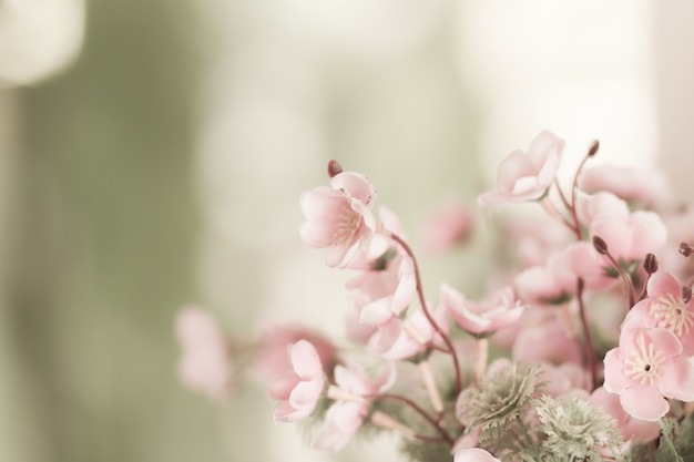 Flores rosadas en la naturaleza, primer plano