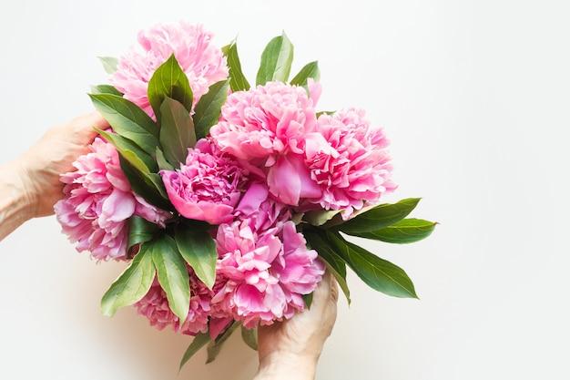 Flores rosadas de la peonía en mano femenina en blanco. vista desde arriba.