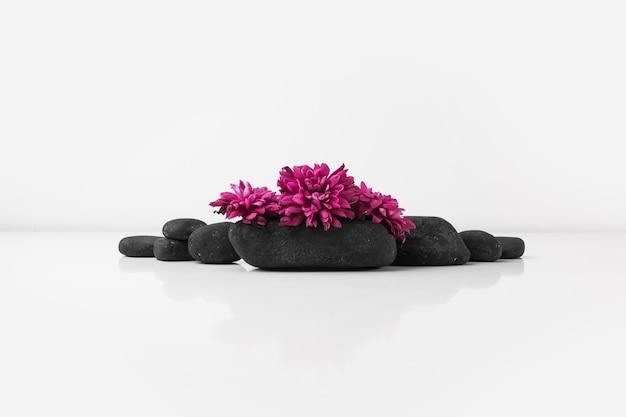 Flores rosadas en piedras negras del balneario contra el contexto blanco