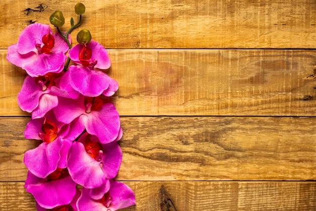 Flores rosas bastante elegantes sobre fondo de madera