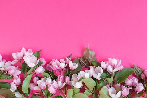 Flores rosas blancas sobre una superficie rosa brillante