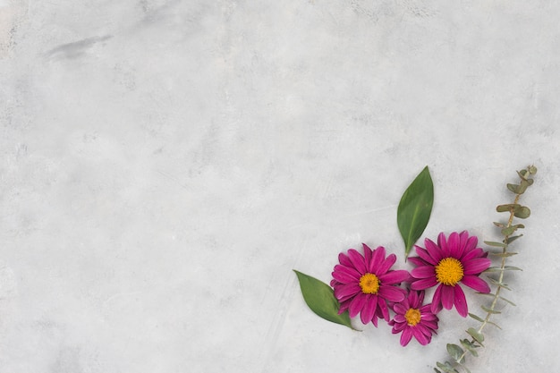 Flores rosas con hojas en mesa gris.