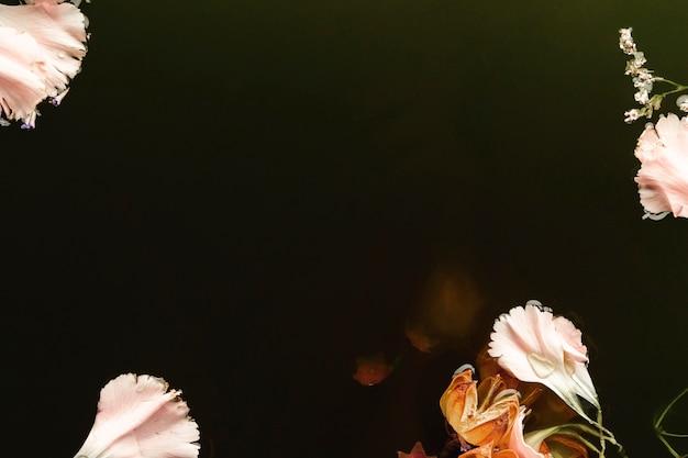 Flores rosas y naranjas en agua negra con espacio de copia