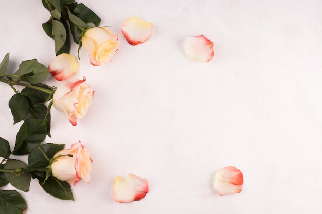 Flores rosas con pétalos en mesa.