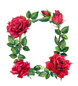 Flores rosas rojas - borde floral. marco acuarela