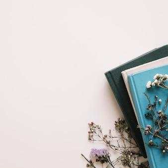 Flores secas en libros