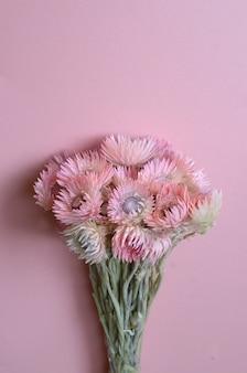Flores secas sobre fondo rosa