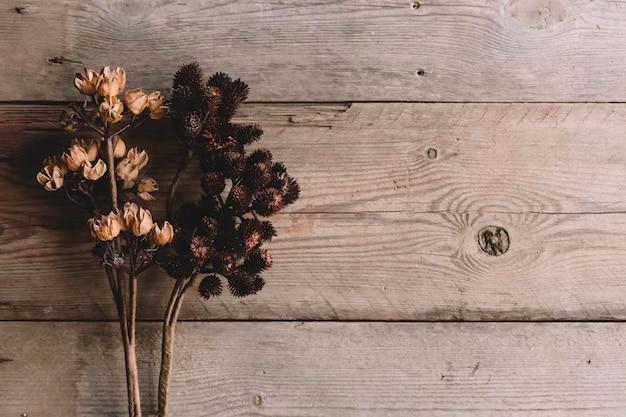 Flores silvestres secos sobre textura de madera