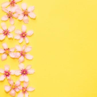 Flores sobre fondo amarillo con copyspace