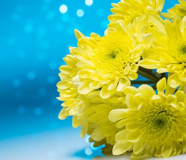 Flores sobre fondo azul bokeh