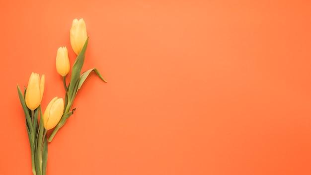 Flores de tulipán amarillo en mesa naranja