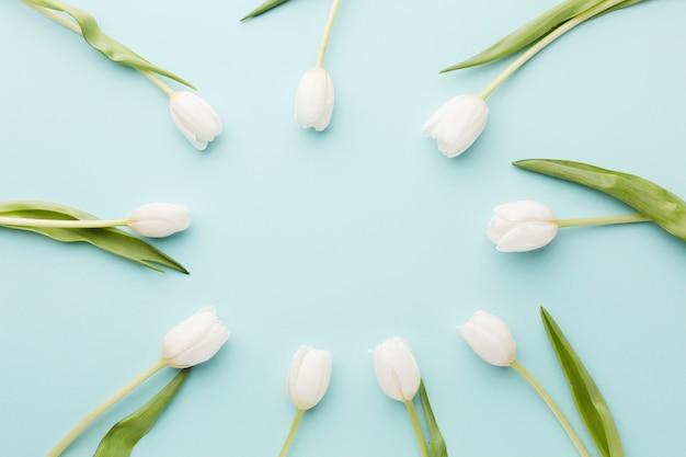 Flores de tulipán con arreglo de hojas en círculo